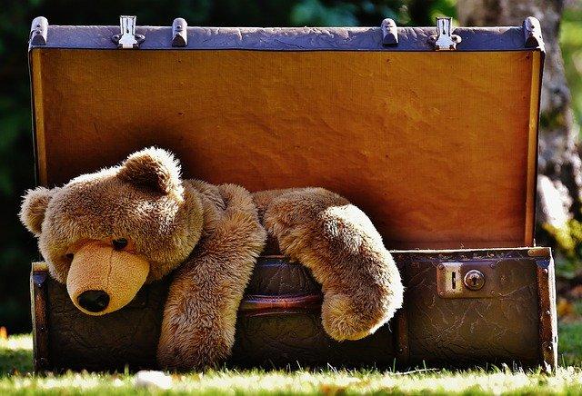 plyšák v kufru